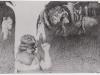 Schwarzweiß Zeichnung Peter Dworak 004